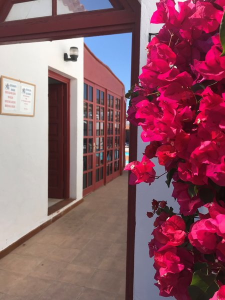 Castillo Beach Bungalows in Caleta de Fuste, Fuerteventura Außenaufnahme