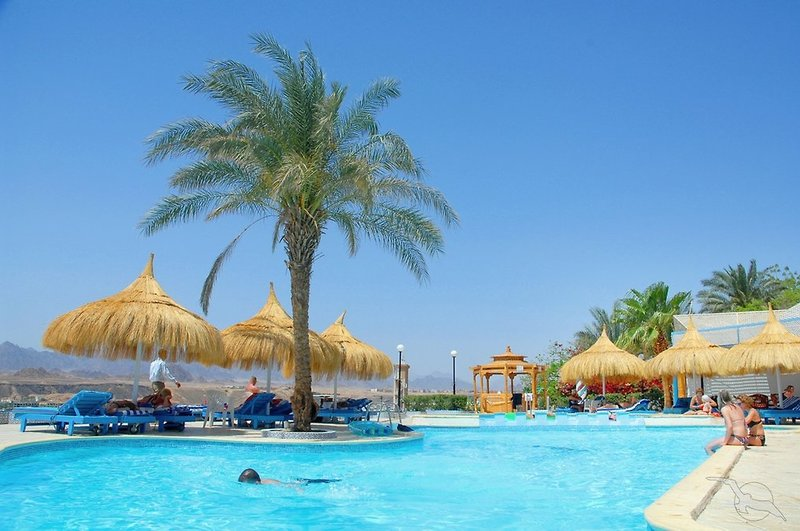 Beach Albatros Resort Sharm El Sheikh in Sharm el-Sheikh, Sinai - Halbinsel Pool